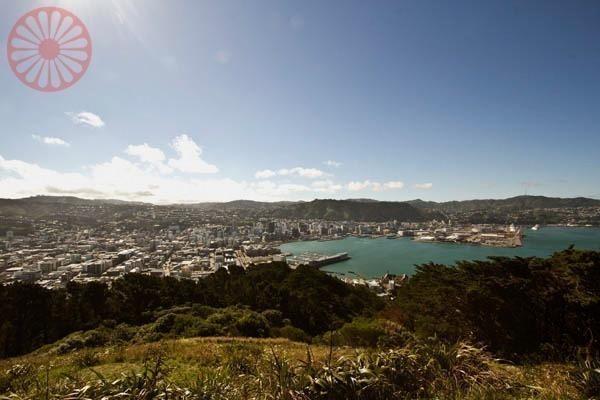 regiões de Wellington, Vida Cigana