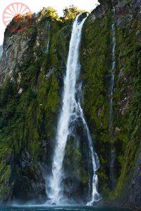 Milford Sound Vida Cigana