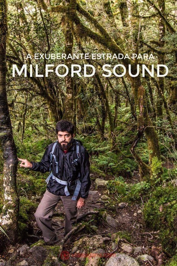 Um homem faz uma trilha no meio de uma mata fechada no caminho para o Lake Marian, na estrada para Milford Sound. Ele veste preto. A trilha dura 3 horas ida e volta. A mata é verde e bastante fechada, com chão lamacento.