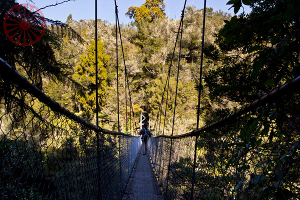 parque nacional abel tasman vida cigana