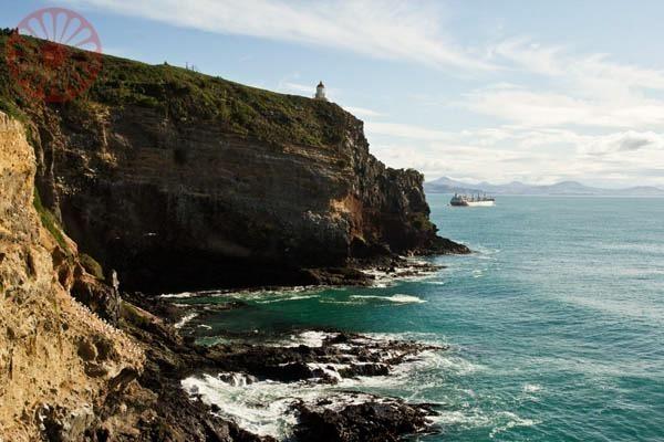 Dunedin-Nova-Zelandia