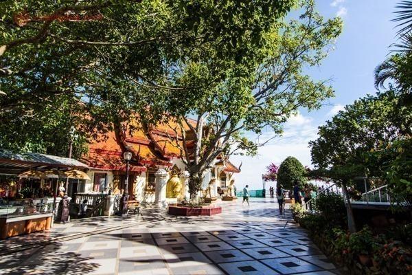 Os jardins de um templo budista em Chiang Mai, cheio de árvores
