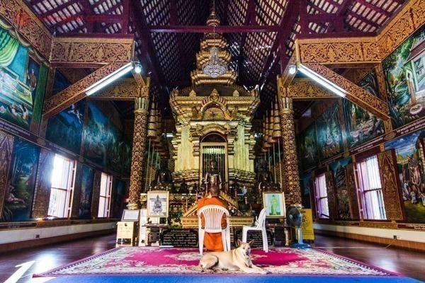Um templo budista bem antigo feito de madeira, com um imenso altar dourado no meio