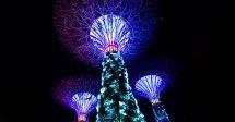 Gardens by the Bay Cingapura