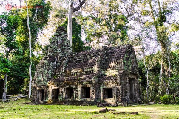 https://middlesavagery.wordpress.com/2013/04/17/the-tomb-raider-temple-ta-prohm-at-angkor-wat/