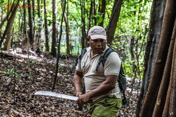 homem moreno descendente de indígena usando boné e segurando um facão mostra como é viver na floresta amazônica cercado de árvores verdes