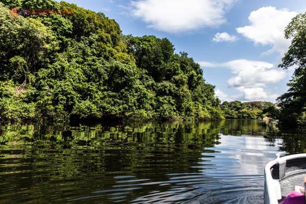 passeio de barco pelo rio solimões com vegetação verde da floresta amazônica com céu azul com nuvens brancas e água escura com ondas