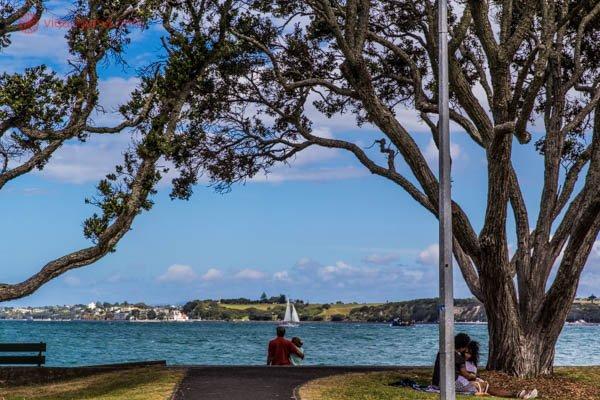 Um casal sentado na beira do mar, debaixo de uma árvore, com um veleiro ao fundo. Do outro lado do mar fica outro bairro, com casas. No canto direito da foto também tem outro casal sentado na grama aproveitando o dia.