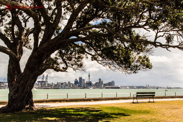 Onde ficar em Auckland: Ponsonby - Uma árvore em primeiro plano jogando sombra no chão. Do lado direito da foto, um banco vazio se encontra. Em sua frente, o mar. E ao fundo, a cidade de Auckland, na Nova Zelândia.