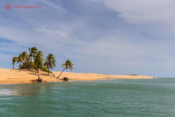 O delta do São Francisco, lugar maravilhoso entre os estados de Alagoas e Sergipe. Visitamos num lindo dia ensolarado, com céu azul, nuvens brancas, areias claras e água verdinha. Muitos coqueiros também para embelezar mais.