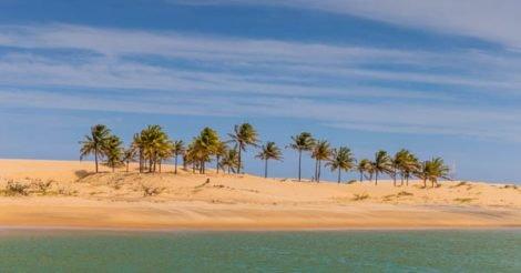A duna no delta do São Francisco, na divida entre Alagoas e Sergipe. Com suas areias branquinhas, cheias de coqueiros altos, céu azul com algumas poucas nuvens brancas pintando o céu e as águas do Velho Chico verdinhas, difícil achar lugar tão bonito nesse nosso Brasil.