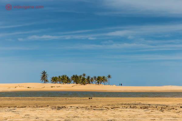 A duna no delta do São Francisco, com o céu azul, areia clara, coqueiros e uma lagoa em seu meio.