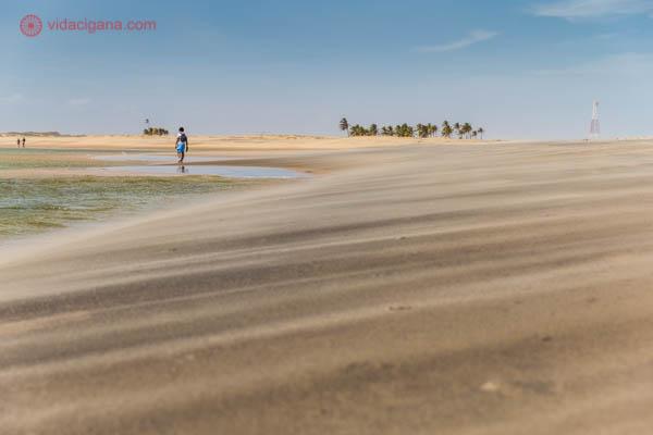 O banco de areia do delta do São Francisco, com a areia voando em tons claros e escuros. Ao fundo, um homem anda na beira do rio, que tem águas verdes. O céu está azul, e coqueiros se encontram no lado direito da foto.