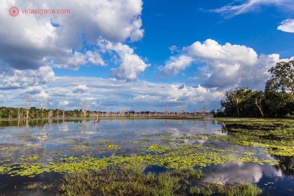 O caminho para um dos templos de Angkor no Camboja. O céu está azul com nuvens brancas que refletem no lago a frente que está cheio de vitórias régias.
