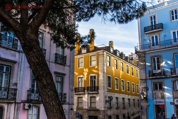 O que fazer em Lisboa: O bairro de Príncipe Real é um dos mais caros e chiques de Lisboa, com dias tranquilos e noites agitadas em seus lindos restaurantes. Na foto vemos uma das ruas do bairro, com um prédio amarelo no fundo, entre dois outros prédios. Uma árvore se encontra no canto esquerdo da foto. O céu está azul.