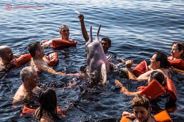 O que fazer em Manaus: Pessoas nadando com o boto cor de rosa no Rio Negro, no estado do Amazonas, Brasil. O boto pula para se alimentar enquanto está cercado de pessoas nadando. Um homem o alimenta. O boto é parente do golfinho, possui a barriga rosada.