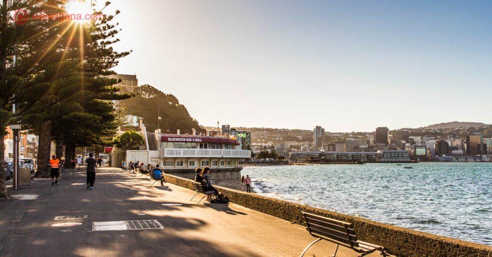 O que fazer em Wellington: A capital da Nova Zelândia é cheia de surpresas, com suas lindas ruas. Na foto vemos Oriental Bay, uma das praias mais frequentadas de Wellington, com pessoas pegando sol na calçada, árvores e restaurantes na beira do mar.