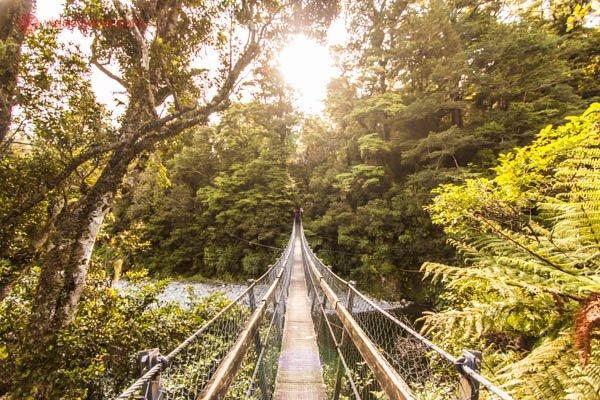 O que fazer em Wellington: O Kaitoke Regional Park é um parque nacional em Upper Hutt, cheio de trilhas, natureza, swing bridges e muita beleza. Lá foi onde filmaram Rivendell, ou Valfenda, de O Senhor dos Aneis.