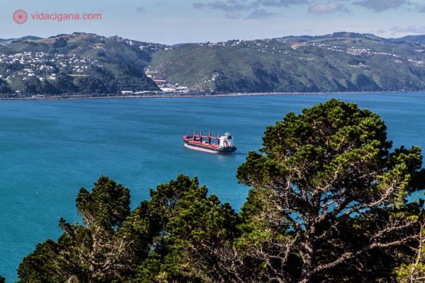 O que fazer em Wellington: A vista do topo do Mount Victoria, o monte mais alto da capital neozelandesa. Lá de cima é possível ver toda a baía, além dos morros ao redor. As águas da baía são azuis, lindo!