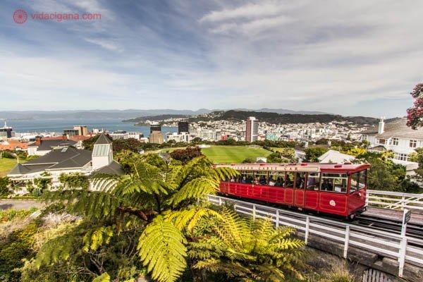 O que fazer em Wellington: O Jardim Botânico de Wellington é uma das atrações da cidade, o interessante é ir até seu topo num bondinho vermelho que sobe desde o centro da cidade. Lá embaixo, uma vista incrível da cidade e da baía.