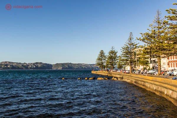 O que fazer em Wellington: A praia de Oriental Bay é a mais famosa e frequentada de Wellington, suas águas são azuis, limpas, e seu calçadão é cercado de árvores, perfeito para um passeio.