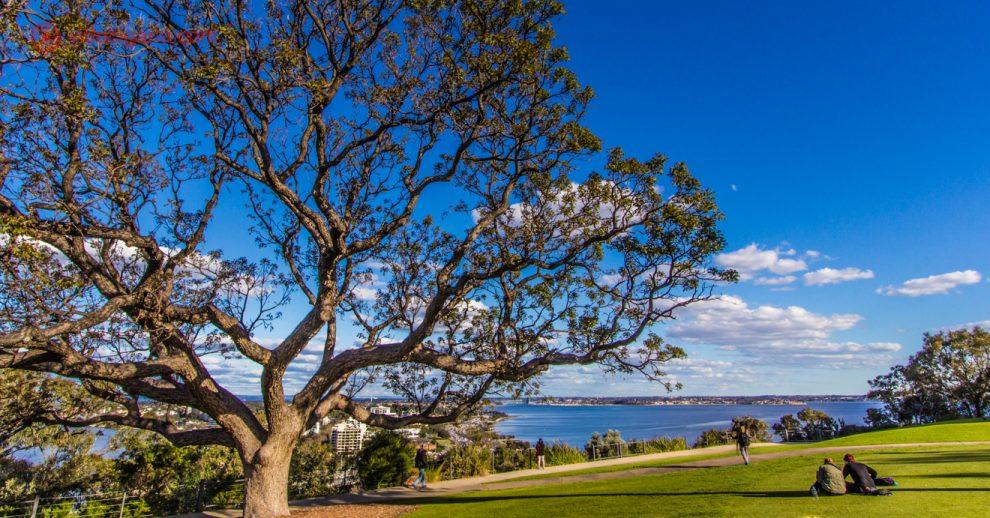Onde ficar em Perth: os 8 melhores bairros e regiões da cidade australiana conhecida por ser a metrópole mais isolada do mundo
