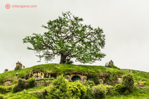 os principais pontos turísticos da nova zelândia: hobbiton, a vila dos hobbits de o senhor dos anéis