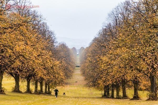 Onde ficar em Belfast: o outono