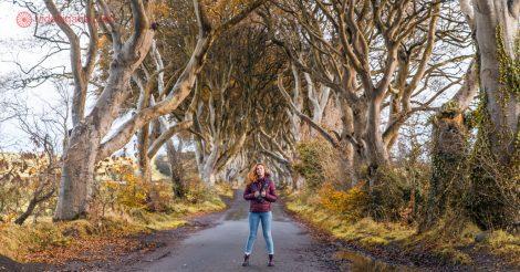 Roteiro Irlanda: A rua na Irlanda do Norte chamada The Dark Hedges, onde filmaram Game of Thrones. A rua é cheia de árvores que criam um arco. Uma mulher está parada no meio da estrada