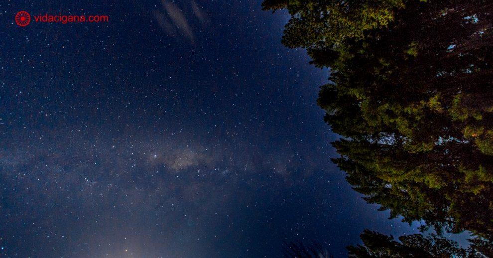 Como fotografar a Via Láctea: a Via Láctea no meio da foto na horizontal com árvores no canto direito