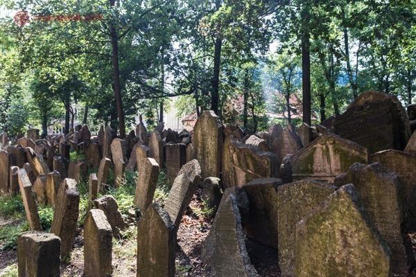 Os milhares de jazigos no Antigo Cemitério Judeu
