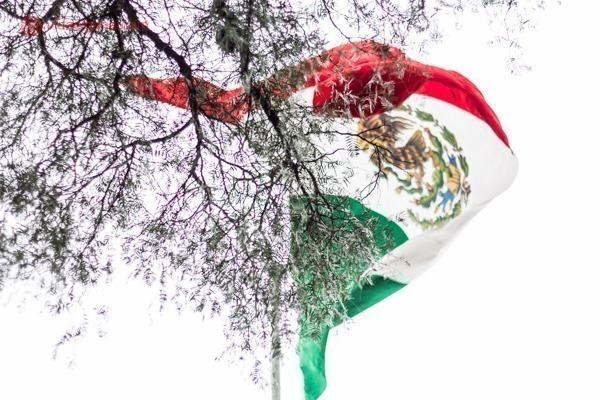 Onde ficar na Cidade do México: a bandeira do México balançando atrás de uma árvore sem folhas