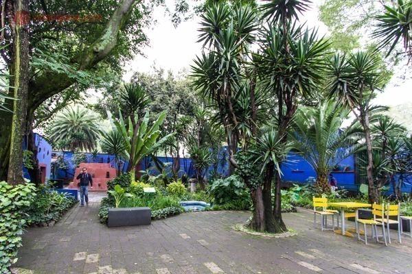 Onde ficar na Cidade do México: O pátio de dentro da Casa azul de Frida Kahlo
