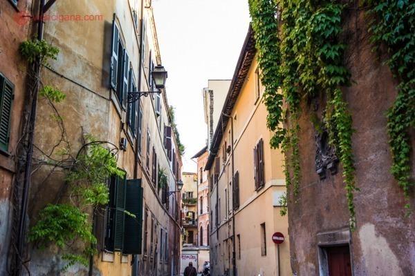 vista das casas do bairro de Trastevere
