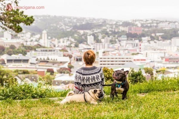 Uma mulher e 2 cachorros no alto de uma colina na Nova Zelândia