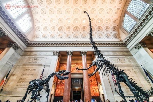 2 fósseis de dinossauros dentro do salão principal do National History Museum