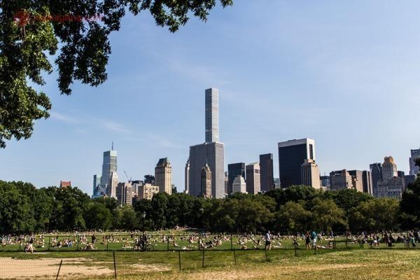 O Central Park, cheio de árvores, um gramado imenso com várias pessoas tomando sol, e os prédios ao fundo