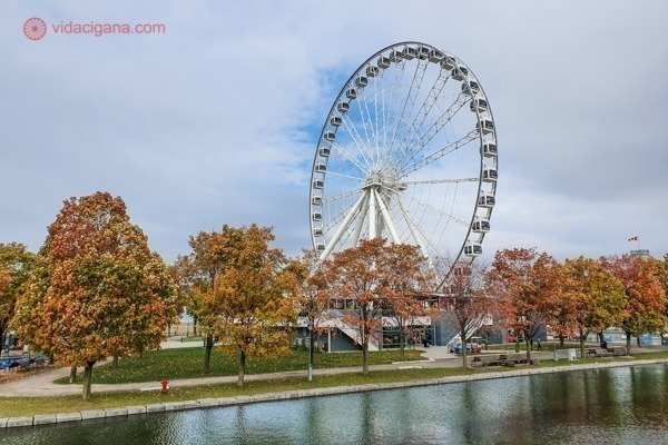 O que fazer em Montreal: a roda gigante no porto antigo