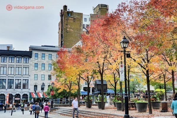 O que fazer em Montreal: A Praça Jacques-Cartier com árvores bem outonais