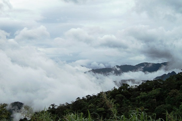 A serra de Petrópolis com bastante vegetação e neblina