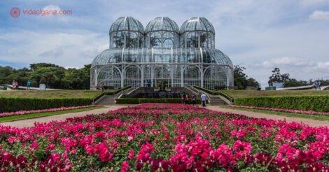 Onde ficar em Curitiba: O Jardim Botânico de Curitiba, com sua estufa ao fundo e um jardim de flores vermelhas na frente