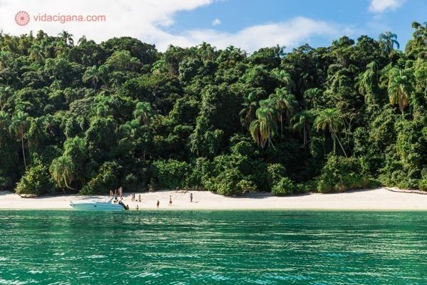As praias em Ilha Grande têm águas claras e vegetação intacta