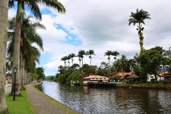 O rio Perequê-açu com palmeiras em suas margens