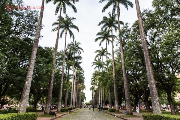 Onde ficar em Belo Horizonte: A Praça da Liberdade, com suas palmeiras imperiais