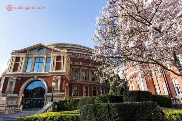 O prédio circular do Royal Albert Hall com uma cerejeira ao seu lado