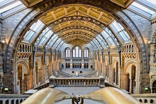 O interior do Natural History Museum com seu teto abobadado e dourado